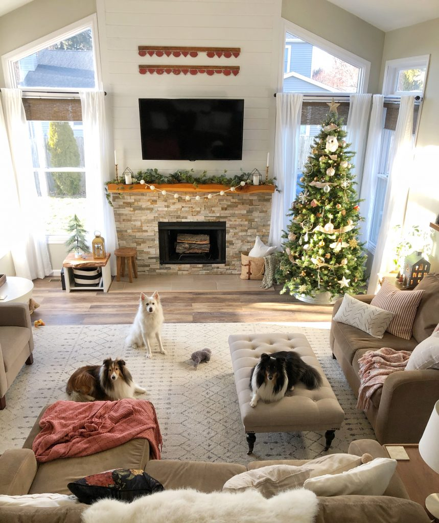 Boho Farmhouse Christmas Living room